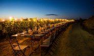 Gli italiani si scoprono sempre più 'turisti del vino'