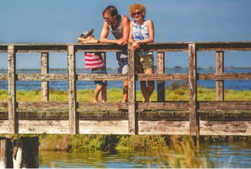 Con 'Primavera Slow' 3 mesi per scoprire Parco Delta del Po