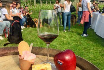'Gemme Di Gusto' sulla Strada del Vino e dei Sapori del Trentino