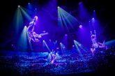 Cirque Du Soleil At Sea, i nuovi spettacoli a bordo di Msc Grandiosa