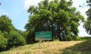 Riapre il Parco del Tuscolo, in programma weekend di eventi