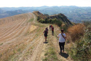 'I love Cammini Emilia Romagna', 12 passeggiate gratuite tra boschi e pievi