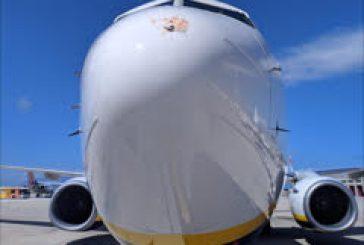 Stormo uccelli in motore volo Ryanair, atterraggio regolare a Palermo