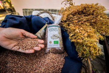 Tra degustazioni ed escursioni per scoprire le eccellenze agroalimentari di Ustica