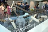 AdP, archeologia subacqua protagonista con una mostra nello scalo di Brindisi