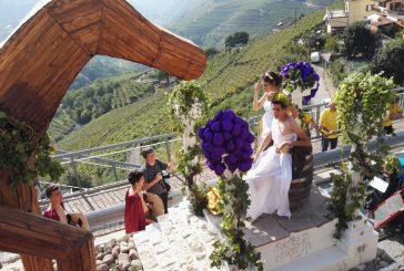 Countdown per la 62^ edizione della 'Festa dell'Uva ' in Val di Cembra