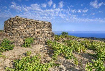 Dal mare al vino con tre grandi concerti: a Pantelleria c'è Passitaly