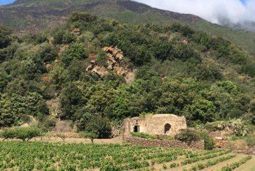 Vivere Pantelleria: ecco i pacchetti taylor made per le scuole superiori