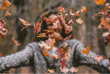 In Veneto per ammirare la magia del foliage d'autunno
