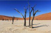 Namibia in libertà con la proposta Fly & Drive di KiboTours