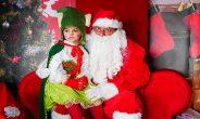 Natale a Zoomarine, biglietti scontati e 2 nuove formule di abbonamento